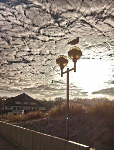 Die Ferienwohnung Graal-Mueritz-Appartement am Ostseestrand von Graal-Müritz bietet Ihnen nicht nur Strand und Sonne im Sommer
